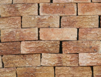 Argon Rustic - Semi Face Brick