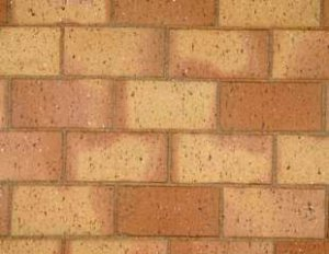 Cederberg Paver - Paving bricks