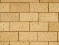 Champagne Paver - Paving bricks