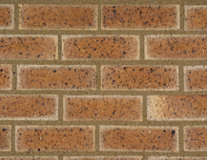Country Cottage Travertine - Clay Facebrick