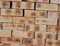 Dapple Multi-Mix Light Travertine - Semi Face Brick