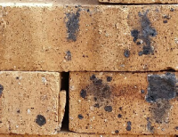 Golden Onyx Travertine - Semi Face Brick