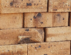 Golden Travertine - Semi Face Brick