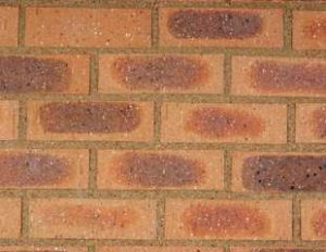 Wild Wheat Travertine - Clay Face Bricks